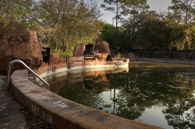 Hình ảnh công viên Disney World bị bỏ hoang giống như trong phim về ngày tận thế