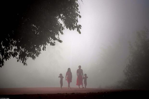 Vào tháng 8 vừa qua, Tổng thống Michel Temer dỡ bỏ lệnh cấm khai thác mỏ trong khu vực Renca. Quyết định của ông đã vấp phải những phản ứng dữ dội từ người dân cũng như các nhà bảo vệ môi trường. Bởi việc khai thác mỏ ở khu vực này có thể kéo theo những nguy cơ về môi trường, ảnh hưởng tới đời sống của nhiều bộ lạc người da đỏ trong rừng Amazon.