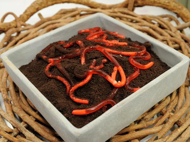 Món ngon Hallween: Công thức làm những chú giun đất từ thạch rau câu độc đáo