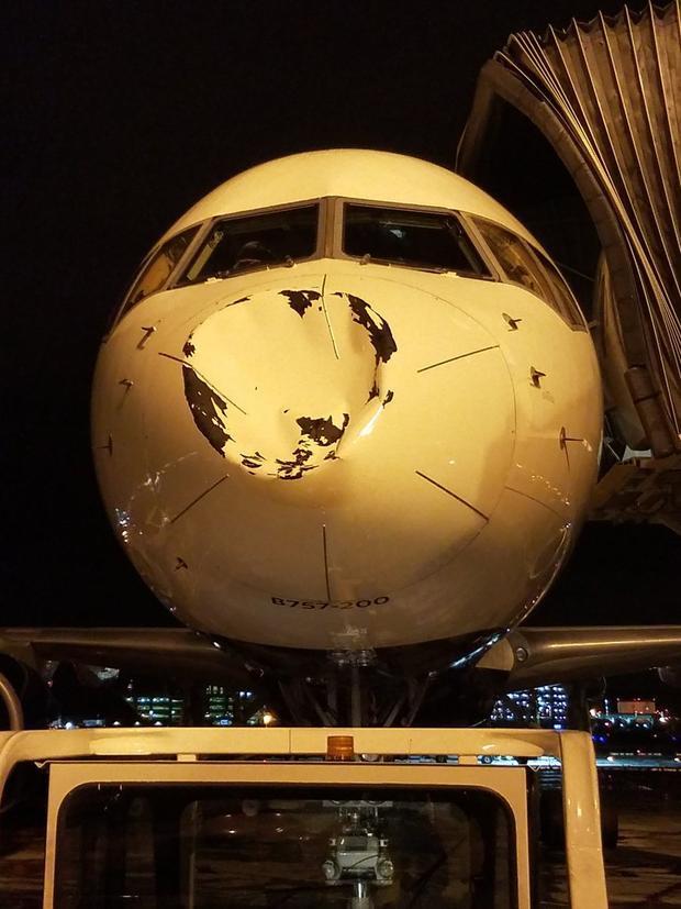Mũi của chiếc máy bay đã bị hư hỏng khi va chạm với chú chim.