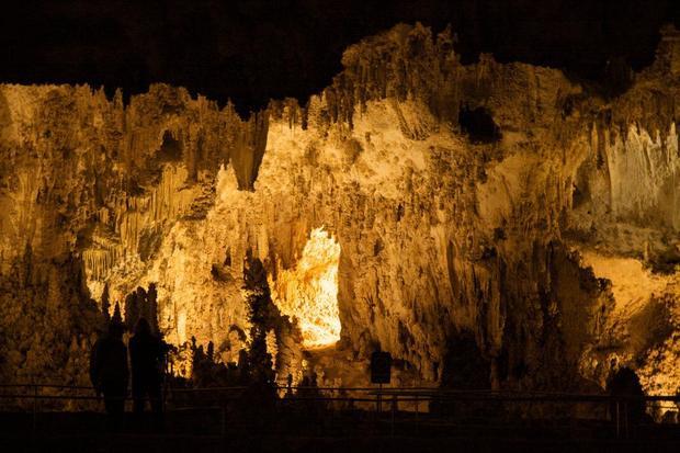 Hang Carlsbad, New Mexico: dưới bề mặt nơi này có hơn 119 hang đá vôi. Ở đây, bạn có thể dễ dàng phát hiện hàng chục loài bò sát, chim chóc và dơi.