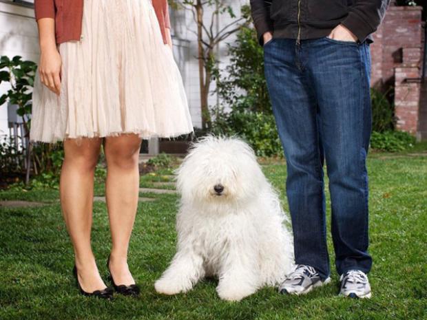 Tháng 3 năm 2011, Chan và Zuckerberg nhận nuôi chó cưng có tên Beast.