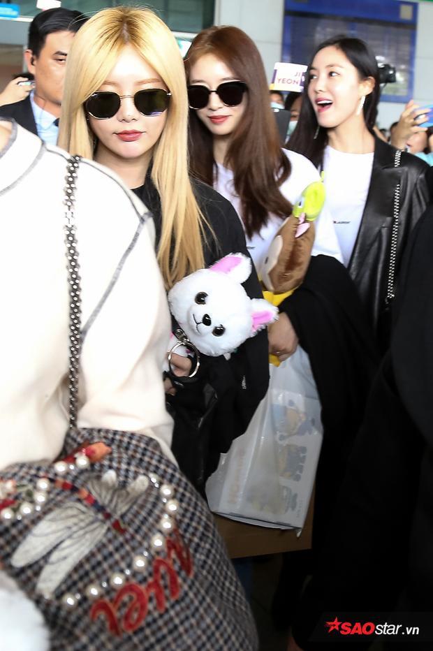 Các thành viên T-ara không dấu được sự vui mừng vì mỗi lần qua luôn nhận được sự chào đón cuồng nhiệt từ fan Việt.