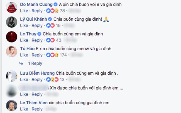 Tú Hảo và nhiều nghệ sĩ Việt chia buồn trước thông tin ông của Lan Khuê qua đời