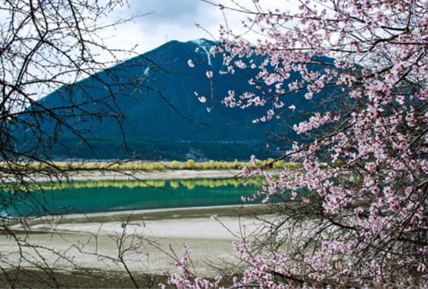 Núi Yoshino (Nara, Nhật Bản) không chỉ được công nhận là di sản thế giới, mà còn là điểm dừng chân lý tưởng mỗi mùa hoa anh đào.