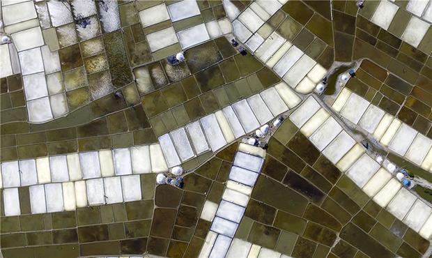Liệu bạn có nhận ra đây là những cánh đồng muối mà bạn vẫn thường biết đến? Chúng như được đo vẽ tỉ mỉ, chẳng thua gì máy móc.