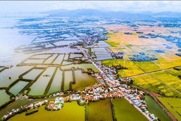 Đây là khu Đông Tuy Phước với những hồ nuôi tôm cá kết hợp với cánh đồng lúa mênh mông.