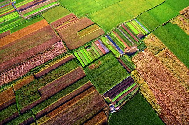 Chiếc chăn rực rỡ được chắp vá từ những vải thừa xinh xắn mà các bạn đang nhìn thấy, chính là làng rau Quảng Thành (Huế).