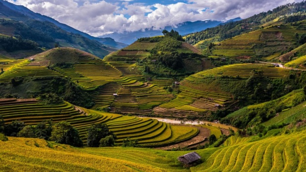 Mù Cang Chải, Việt Nam: Cảnh quan của Mù Cang Chải được hình thành ngoạn mục bởi những cánh đồng ruộng bậc thang.
