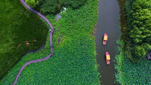 Tảo Trang, Sơn Đông, Trung Quốc