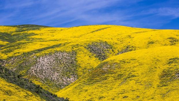 San Luis Obispo, Hoa Kỳ