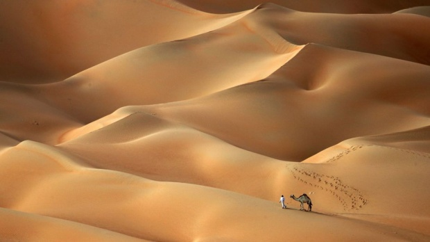 Sa mạc Hameem, Các Tiểu vương quốc Ả Rập thống nhất