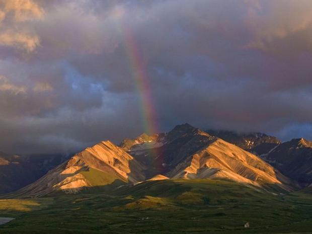 Vườn quốc gia và khu bảo tồn Denali mở cửa mọi mùa trong năm với nhiều hoạt động đáng để du khách đến và khám phá.
