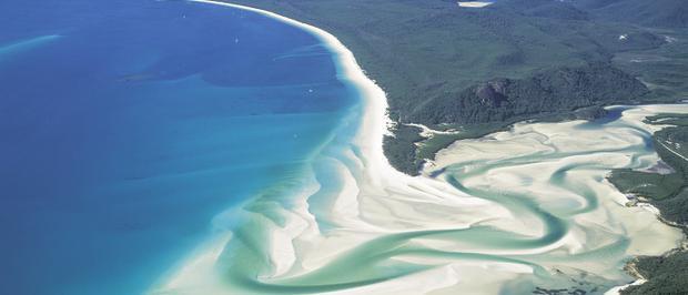 Bờ biểnWhitehaven có những cồn cát trắng phau, những cánh rừng nhiệt đới màu xanh tươi mát và nước biển trong veo.