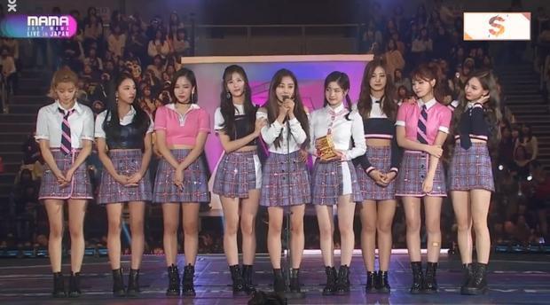 TWICE đạt giải Daesang đầu tiên của MAMA 2017: Bài hát của năm với hit Signal.