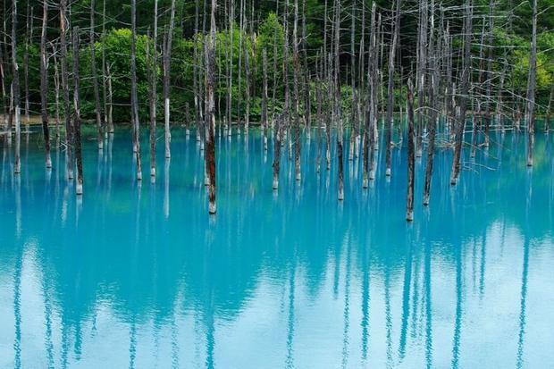 Hồ nước Xanh trở thành điểm du lịch hấp dẫn tại Nhật Bản với màu sắc ma thuật có thể thay đổi theo thời gian. Ngay những ngày đầu mới phát hiện, du khách không khỏi thích thú trước sự biến đổi mê hoặc hết sức ấn tượng này. Mỗi mùa, hồ Xanh lại thay một chiếc áo mới phản chiếu với sắc xanh của nền trời.