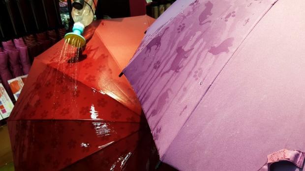 Các hình vẽ cũng như màu sắc trên những chiếc ô này sẽ thay đổi khi gặp trời mưa.