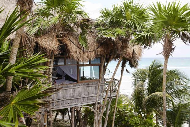 Khu nghỉ mát ở Mexico này có nhà nghỉ nằm trên các cọc gỗ nhô lên trên vùng rừng nhiệt đới để ngắm cảnh biển Caribbean. Ảnh: Papaya Playa