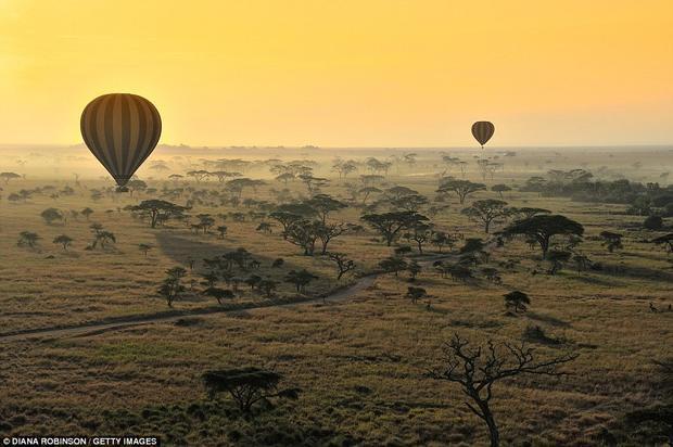 Tanzania: Quốc gia của Châu Phi cũng góp mặt trong danh sách nhờ vào khí hậu ấm áp, địa lý phân hóa, phong cảnh tuyệt đẹp ở núi Kilimanjaro và Công viên Quốc gia Serengeti. Trong ảnh là những khinh khí cầu đang bay trên không trung của thảo nguyên ở Công viên Quốc gia Serengeti.
