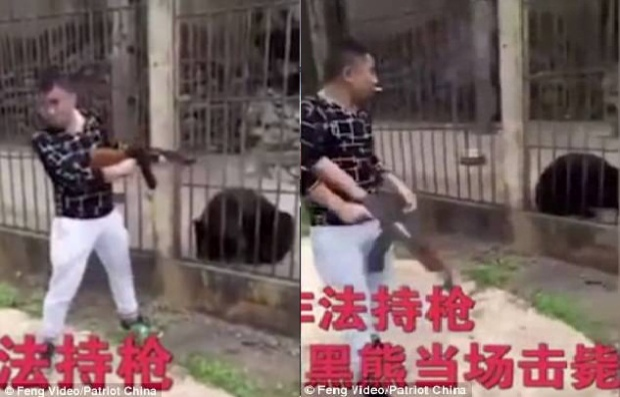 Du khách Trung Quốc giơ súng bắn chết gấu đen gây phẫn nộ
