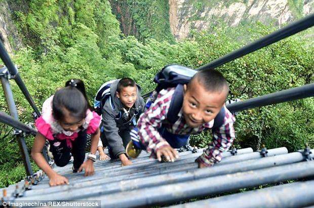 Không chỉMose Labo mà ngay cả trẻ em cũng thích chiếc thang kim loại này.