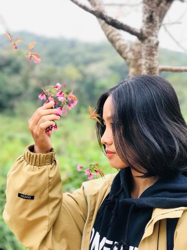 """Tha hồ """"sống ảo"""" với mai anh đào (ảnh: Le Nguyen Hoang Duy)"""