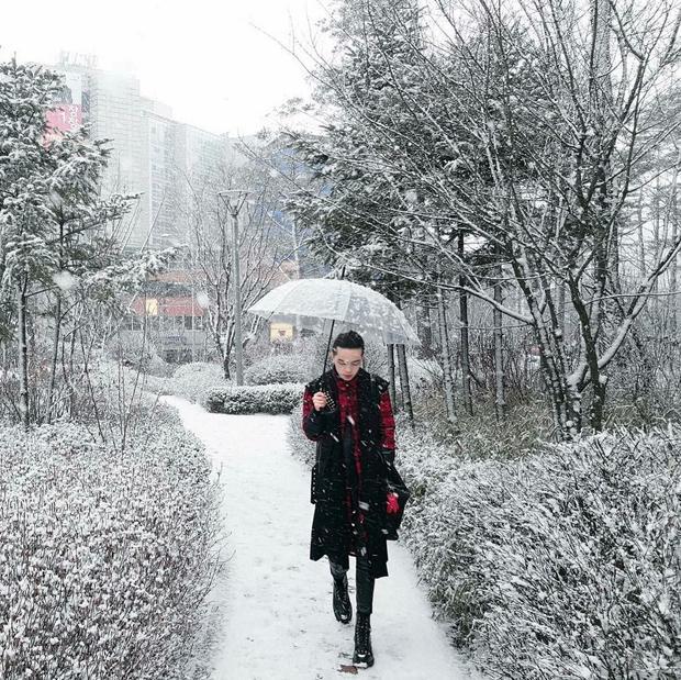 Trốn Sài Gòn những ngày nắng nóng, Kelbin Lei đang tận hưởng khí trời lành lạnh tại Hàn Quốc. Quả không hổ danh là một fashionista có tiếng, Kelbin đã lợi dụng những ngày tuyết phủ trắng xóa để diện set đồ tone đỏ đen khiến chàng nổi bần bật trên mọi background nhưng vẫn giữ được phong cách unisex của mình.