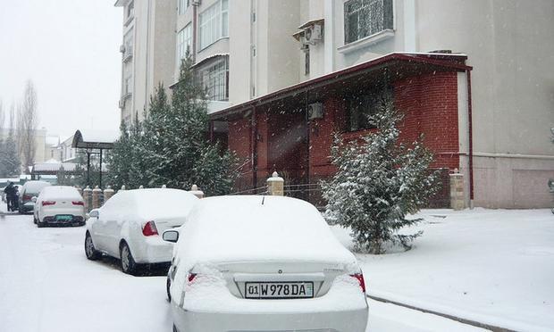 Các con đường và ô tô bị tuyết bao phủ trắng.