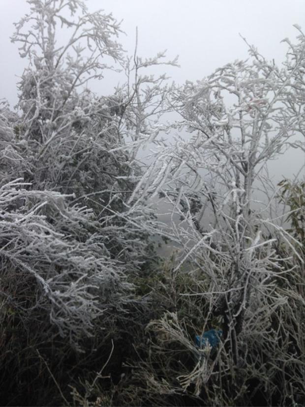 """Trời rét đậm, rét hại, khi xuất hiện băng tuyết càng làm cho cái lạnh trở nên """"kinh hoàng"""" hơn. Ảnh: Dân Việt."""