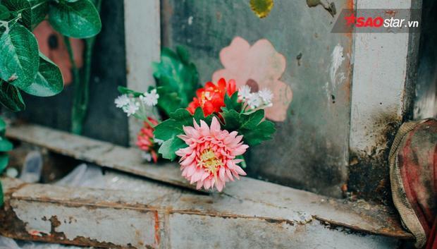 Những bông hoa thắm sắc theo xe đi khắp nơi.
