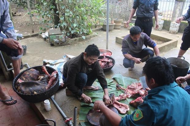 Người dân làng Bào đã mổ 3 con trâu chào đón anh em Tiến Dũng.
