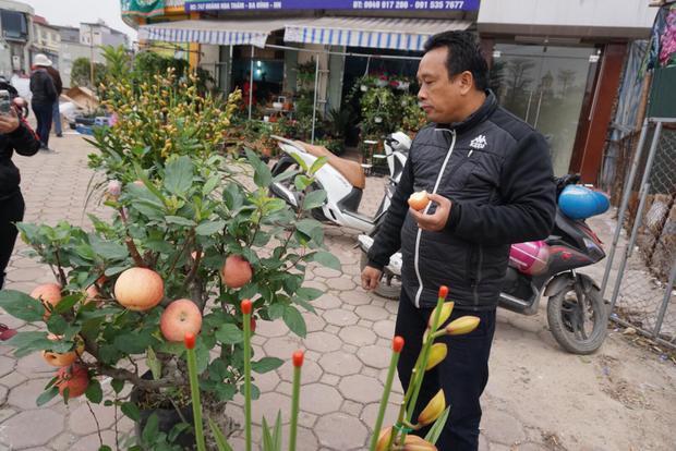 Anh Hải vô tư ăn quả táo và cho biết, ăn không sao vì đây là táo anh trực tiếp mua từ Trung Quốc vận chuyển về.
