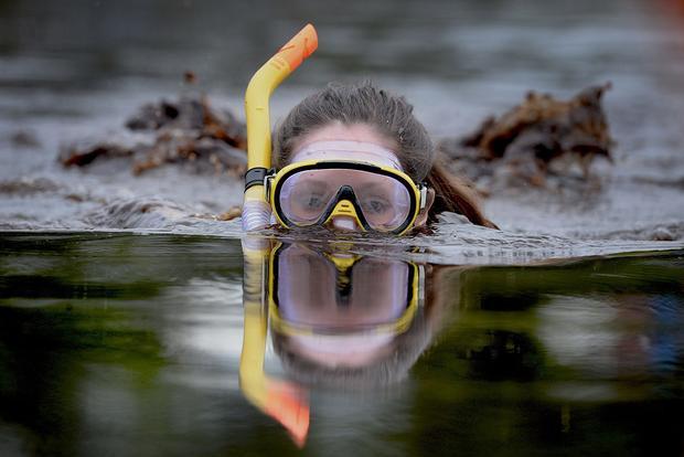 Lễ hội bơi lặn ở đầm lầy lần đầu tiên tổ chức vào năm 1985. Đây là một sự kiện thể thao thường niên tại tại LLanwrtyd Wells, Powys xứ Wales, Vương Quốc Anh. Lễ hội không phân biệt lứa tuổi, giới mình, miễn là người tham gia có đam mê chinh phục những cảm giác mạnh.