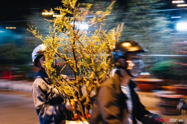 Co ro trắng đêm bán dịp Tết, người nông dân vẫn thấp thỏm vì tâm lý đợi đêm 30 mua hoa giờ chót