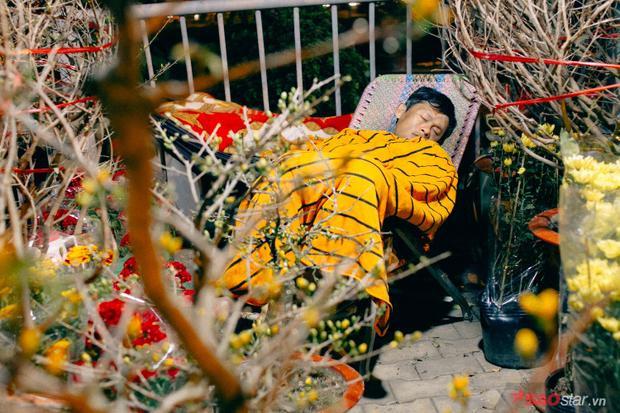 Nhiều người phải co ro ngủ trong đêm Sài Gòn lạnh dưới 20 độ.