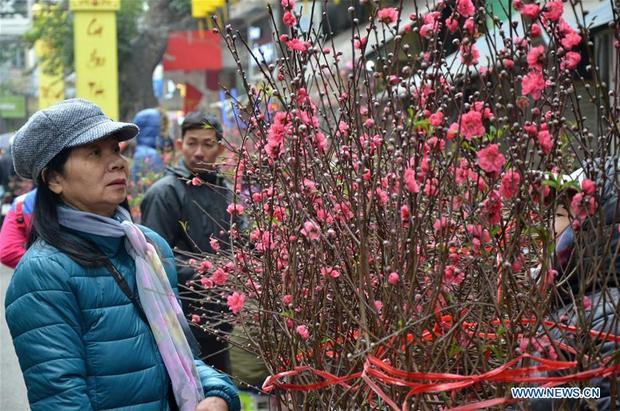 Nếu như ở Trung Quốc, trong mỗi dịp Tết Nguyên đán không thể thiếu đôi câu đối đỏ thì trong mỗi gia đình Việt Nam ngày Tết cũng không thể thiếu cành đào, cành mai hay đôi cặp bánh chưng.