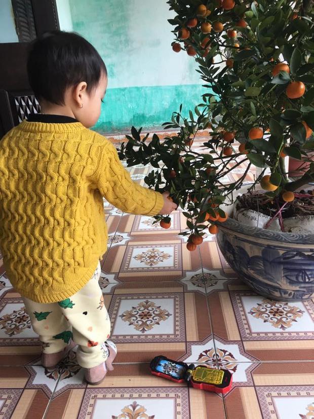 """""""Chắc mai đến lượt con em"""", tài khoản Phạm Hương chia sẻ."""