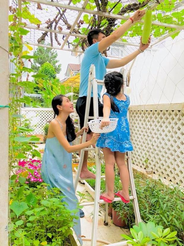 Cả nhà cùng vui vẻ thu hoạch rau quả.