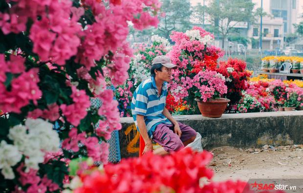 Và Sài Gòn hôm 30 Tết: Là ánh mắt anh nông dân vẫn đang mong chờ một lượt khách cuối cùng ghé qua vườn hoa. Những chậu hoa giấy là công chăm trồng cả một năm trời ròng rã cho thương vụ mùa Tết. Chỉ hết hôm nay thôi, anh lại đánh ghe về quê nhà miền Tây để ăn Tết cùng gia đình mình.