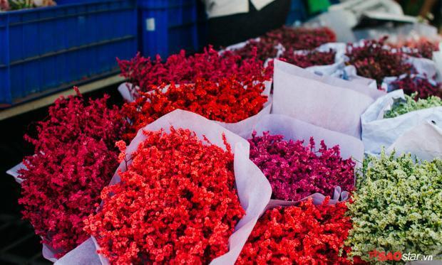 Chiều cuối năm, lang thang ở những chợ hoa truyền thống Sài Gòn đã thấy Tết về đến nơi rồi!
