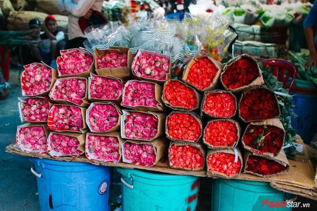 Bước vào chợ Hồ Thị Kỷ, bạn sẽ phải lạc vào sự mê đắm của trăm nghìn loại hoa khoe sắc…