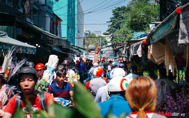 Những ngày cận Tết, chợ hoa Hồ Thị Kỷ càng thêm tấp nập.