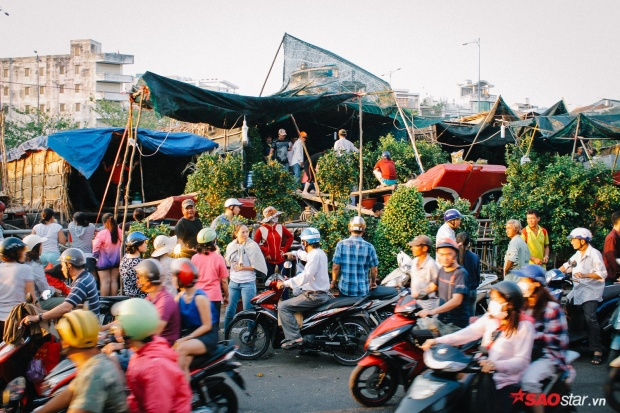 … Đó là cách người Sài Gòn ghé bến Bình Đông để tìm thấy màu Tết sớm và rõ nhất.