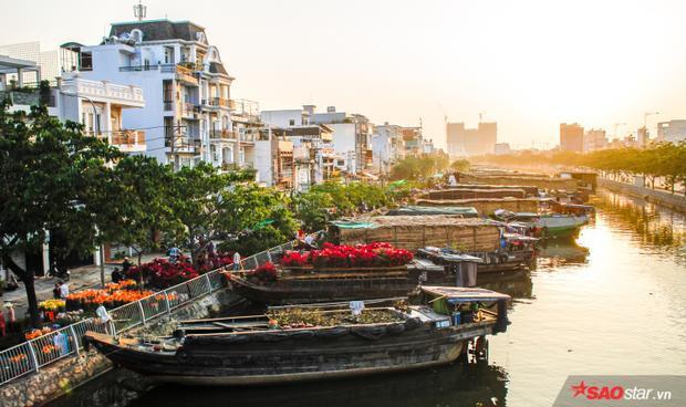 Bến Bình Đông không chỉ bán hoa mà còn bán cả sự chân chất, thiệt thà của những người chân quê phèn đất quanh năm.