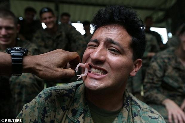 """Một binh sĩ ăn tắc kè sống. Thiếu tá Thái Lan Chaiwat Ladsin, người chỉ huy cuộc diễn tập, cho hay: """"Chìa khóa để sinh tồn là tìm được thứ để ăn""""."""