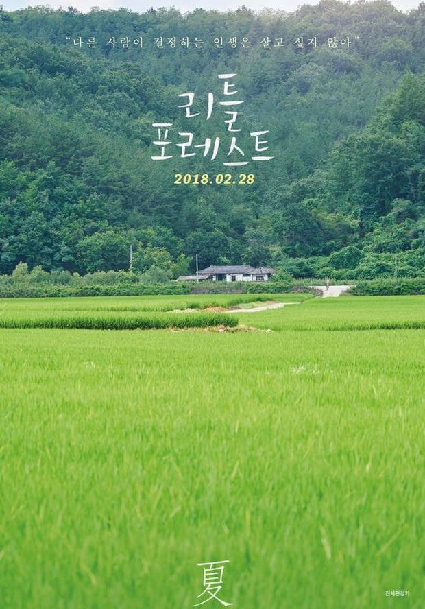 'Little Forest': Thanh xuân 4 mùa và tình bạn yên bình của Kim Tae Ri và mặt cún Ryoo Joon Yeol