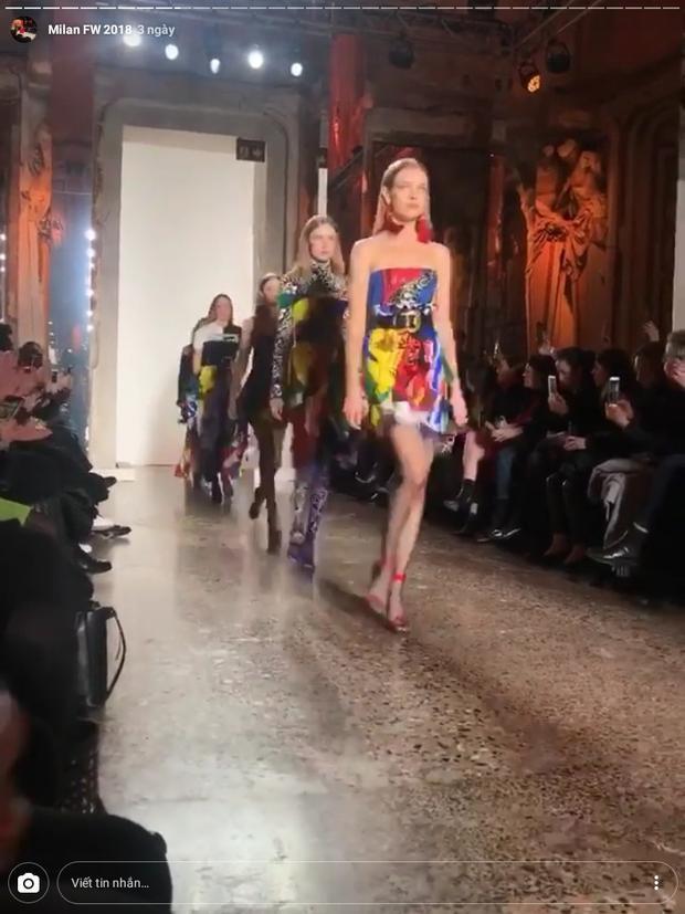Và Versace.