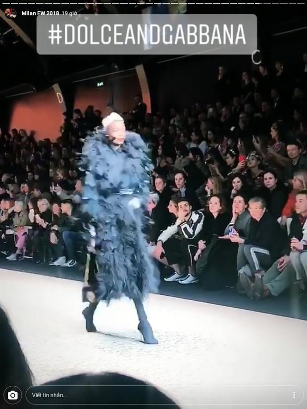 Thảo Tiên là một trong những người vinh dự được xem tận mắt các thiết kế đến từ những thương hiệu danh giá như Dolce & Gabbana…
