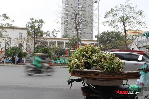 Chỉ cần trên phố có vài gánh hàng rong là trong từng cơn gió, đều thoáng hương hoa bưởi.