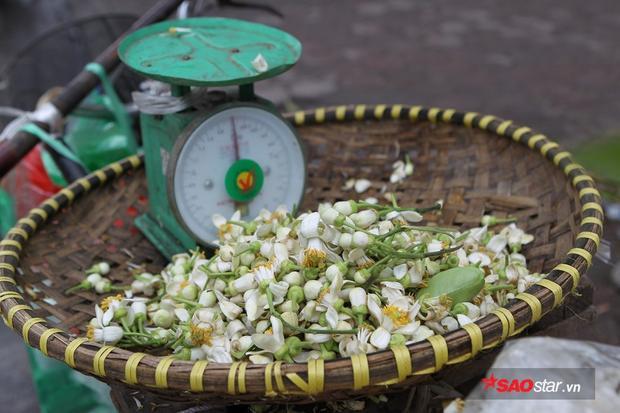 Những bông hoa bưởi rụng cuống này sẽ được bán với giá rẻ hơn.